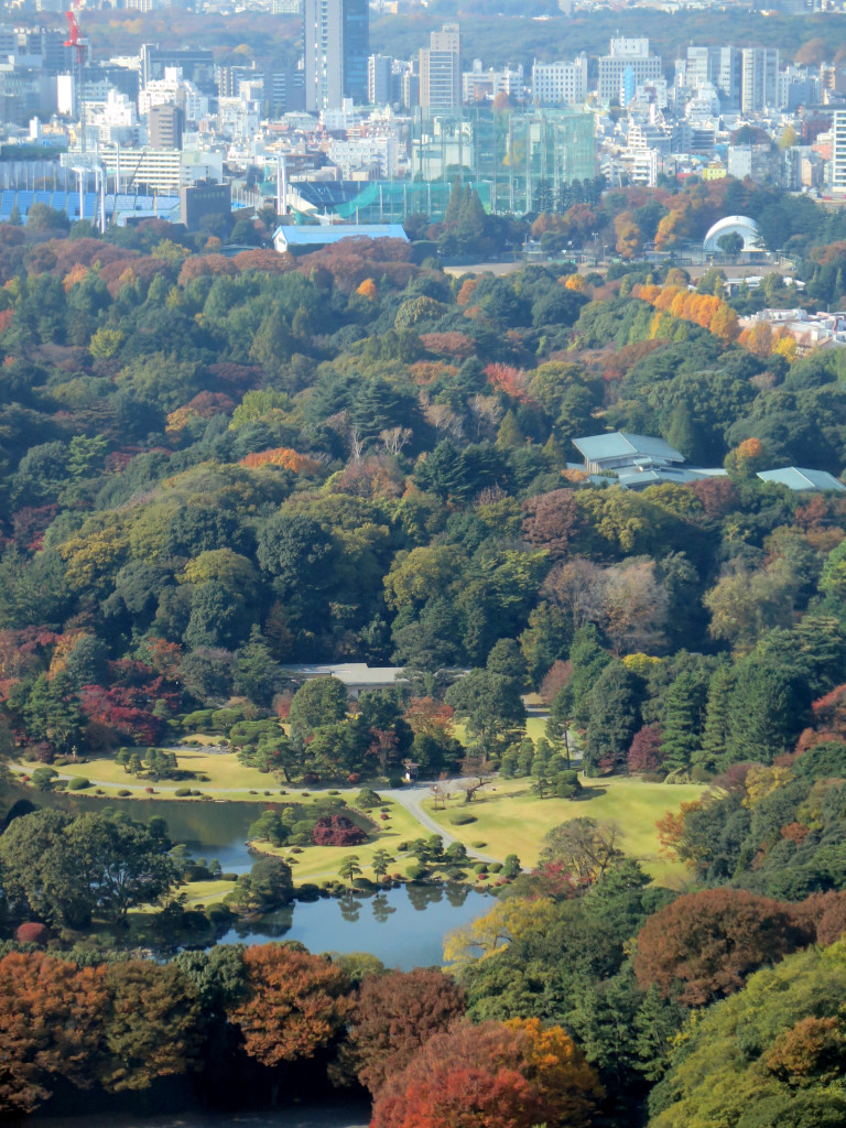 View of Akasaka Palace from my room at Prince Gallery